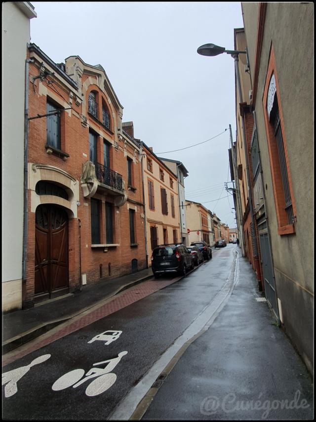 Toulouse1_p.jpg